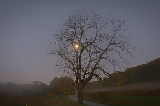 Moonlit Morning by Jeff Oates Photography