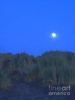 Moonrise at Ocean Beach by Lori Ziemba