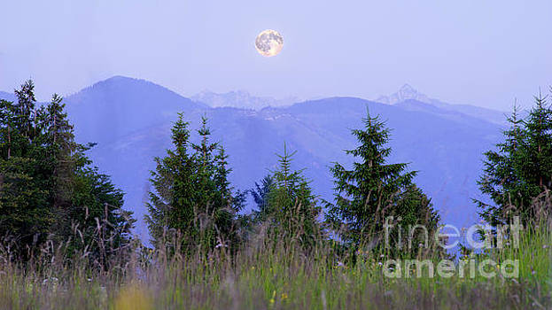 Vyacheslav Isaev - Moonrise in the Alps mountains meadow