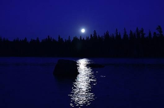 Moonrise on a Midsummer's night by David Porteus