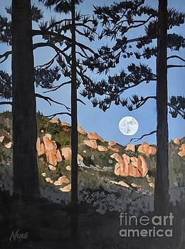 Moonrise over the Desert Divide by James Nuce