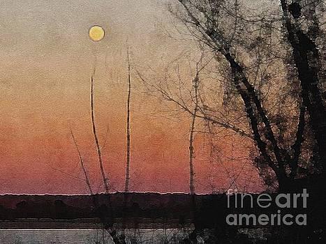 Moonrise by Paul Wilford