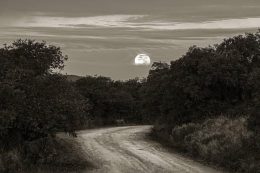 Scott Wheeler - Moonset