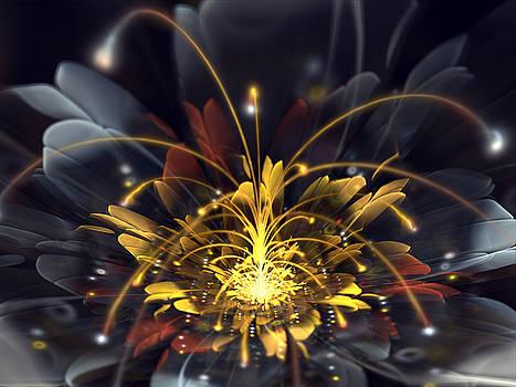 Moonshine Flower by Amorina Ashton
