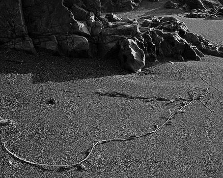 David Gordon - Moonstone Beach I BW