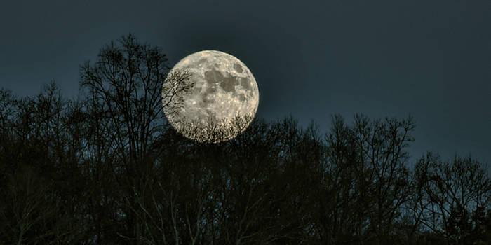 Moonstruck by James Figielski by Paulinskill River Photography