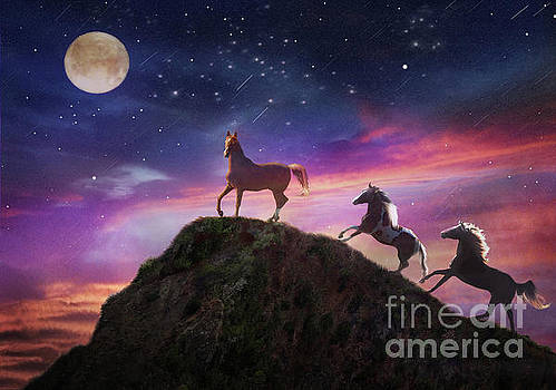 Moonstruck by Melinda Hughes-Berland