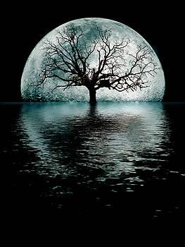 MoonTree by Joseph  Davis