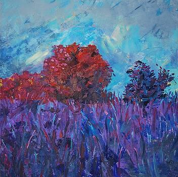 Moor by Emilia Gasienica-Setlak