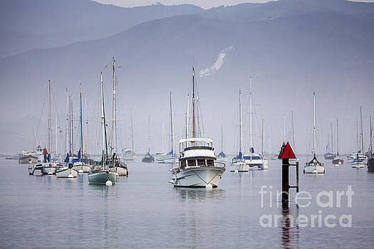 Moored Boats in Morro Bay by Sharon Foelz