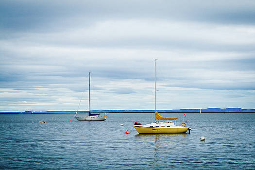 Rich Sirko - Moored Sailboats