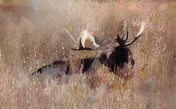 Moose at Tetons by Sabrina Farmer