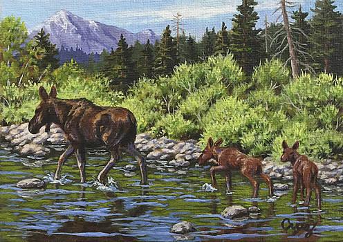 Moose Family by Linda Cruz