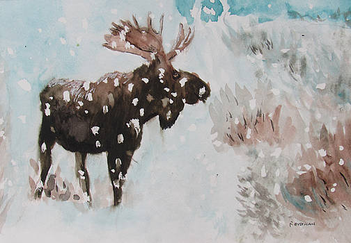 Moose in Snowstorm by Ron Enderland