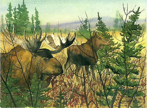Moose Meadow by Bud Bullivant