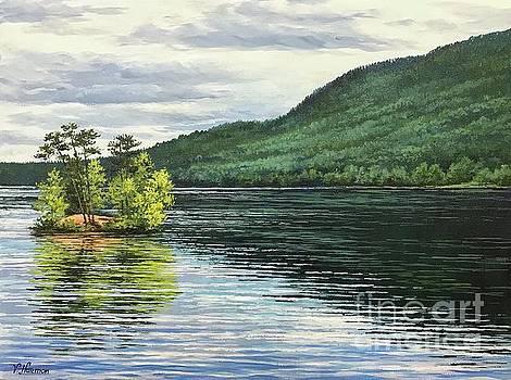 Moose Pond by Varvara Harmon