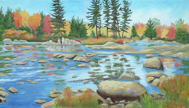 Moose River Low Water 2 by Robert P Hedden