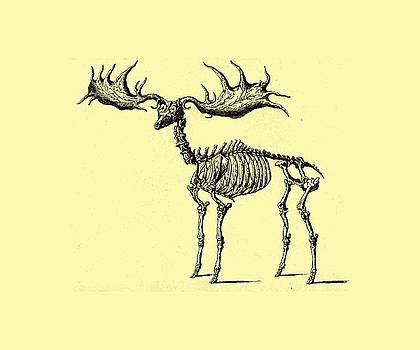 Moose Skeleton T Shirt design by Bellesouth Studio