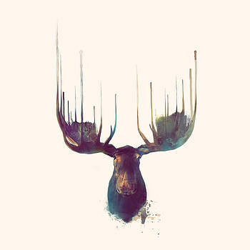 Moose // Squared Format by Amy Hamilton