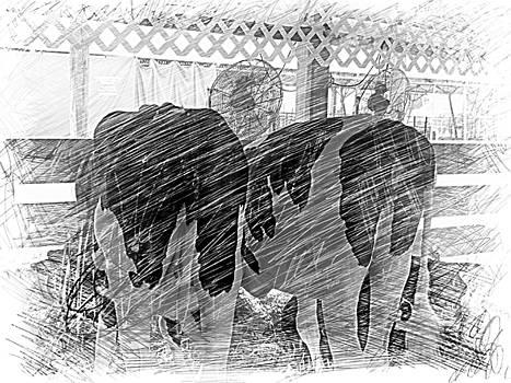 Moo...ving at the County Fair by Deborah Kunesh