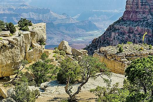 Moran Point view by Gaelyn Olmsted