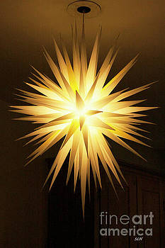 Moravian Star by Lee Hartsell