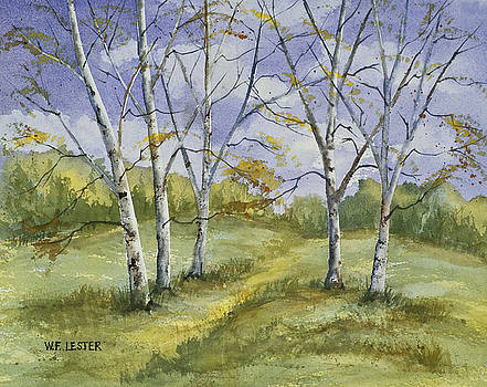 More Birch by Bill Lester