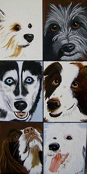More Dog Faces of Love by Debra Campbell