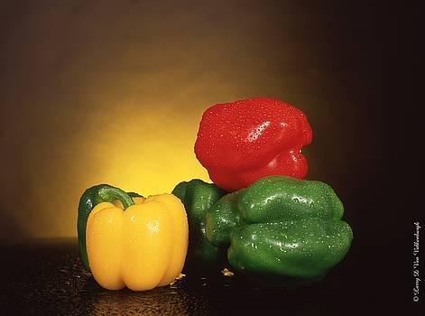 More Peppers by Larry Van Valkenburgh