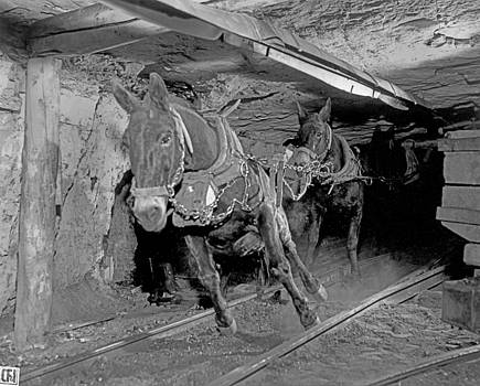 Morley Mine by Colorado Fuel and Iron Photo Department
