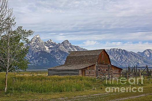 Teresa Zieba - Mormon Row Barn and Grand Tetons