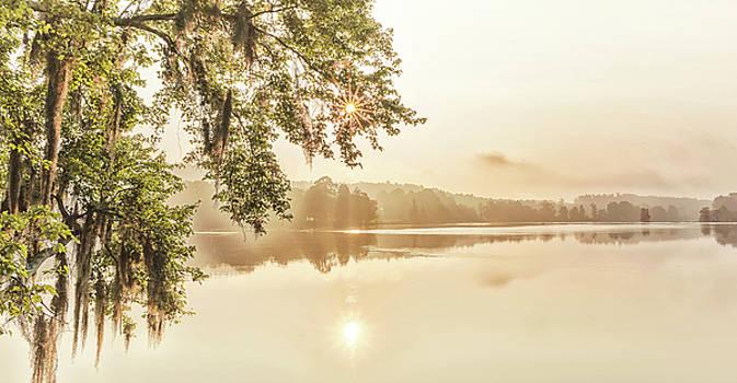 Morning by Ahmed Shanab
