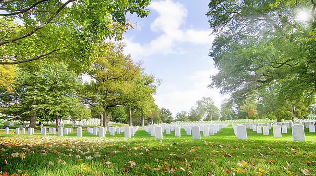 Morning at Arlington  by Mark Andrew Thomas
