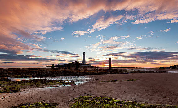 Morning at St Marys Lighthouse. by John Cox