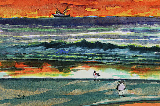 Morning at the shoreline by Julianne Felton