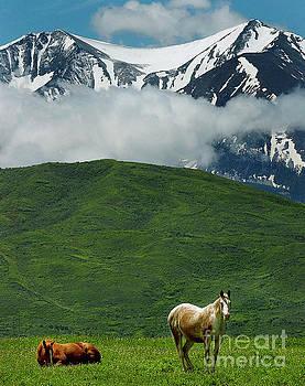 Paul Conrad - Morning at the Someday Ranch