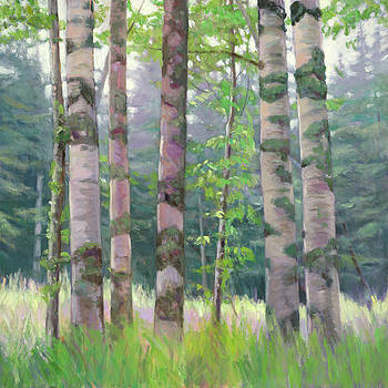 Morning Birches by Lynne Adams