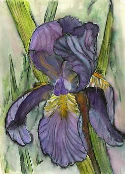 Morning Bloom by Bev Veals