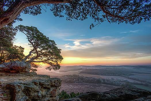 Morning by Brad Bellisle