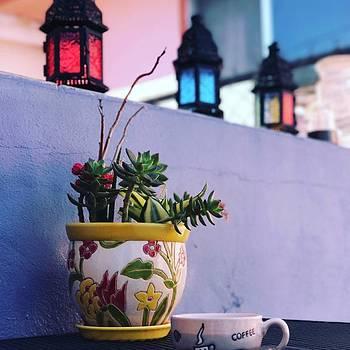 Morning coffee by Thelma Delgado