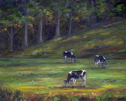 Morning Cows by Jeff Pittman