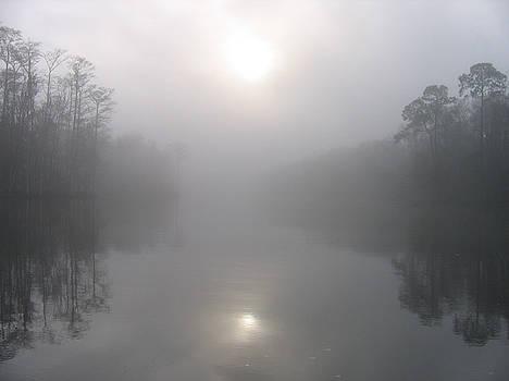 Morning Creek by Rick McKinney