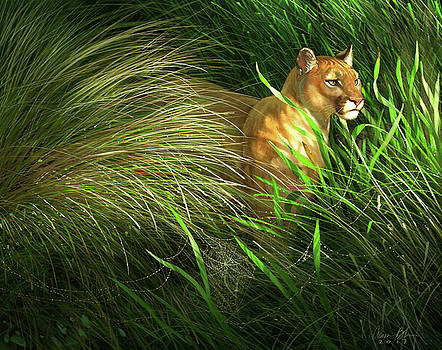 Morning Dew - Florida Panther by Aaron Blaise