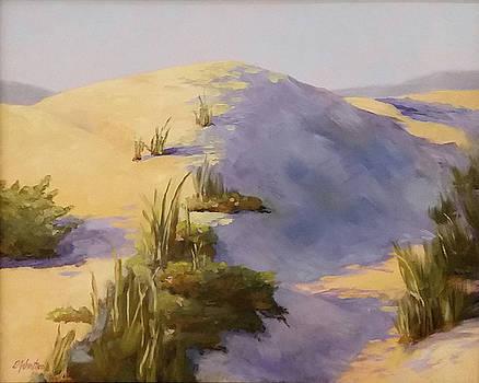 Morning Dune 5 by Beth Johnston