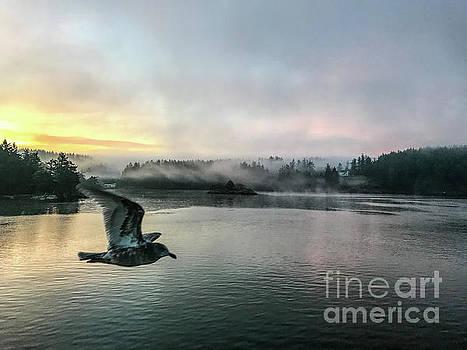 Morning Flight by William Wyckoff