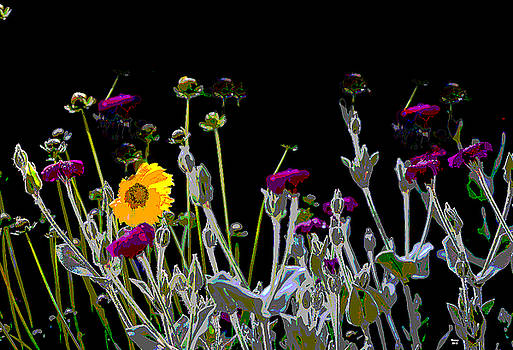 Morning FlowersA by Charles Shoup