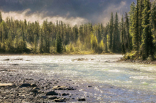 Morning fog at Athabasca river by Daniela Constantinescu