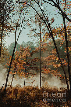 Morning Fog at the River by Iris Greenwell