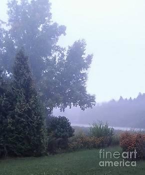 Morning Fog by Diamante Lavendar