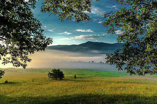 Morning Fog in the Smokies by Eric Albright